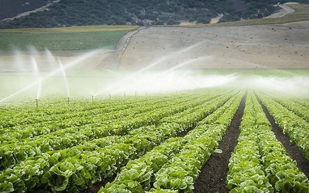Ricerca e controllo delle aree irrigate