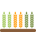 Mappe di Indici di Vegetazione