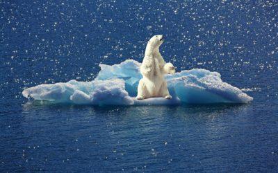 Climate change – Cosa è il cambiamento climatico?